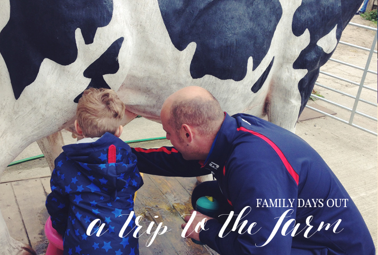 FAMILY DAYS OUT | A TRIP TO COCKFIELDS FARM